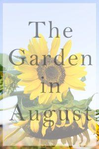 garden in august title image