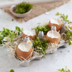 Eggshell candles in egg carton, decorated with greenery and flowers
