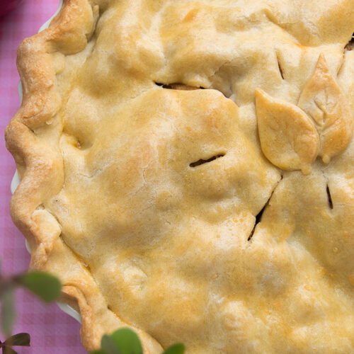 juicy, tender, delicious apple pie..without the gluten